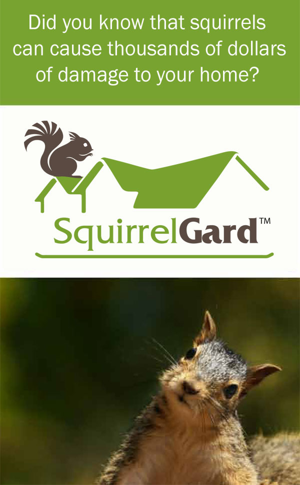 Squirrelgard Installation State Roofing Company Of Texas